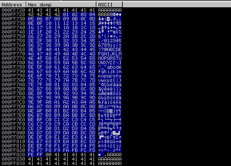 The byte array in memory is used to identify bad characters.